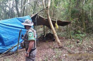 3º Grupamento de Polícia Ambiental investiga área de corte irregular de vegetação nativa em Igrejinha